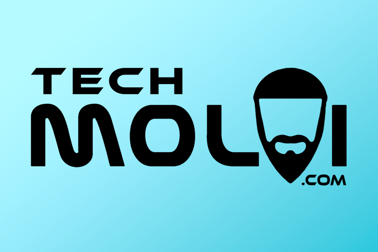 Branding for TechMolvi